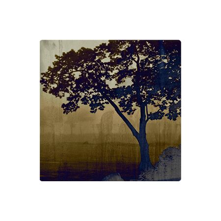 Savanna Morning - Metal Wall Art